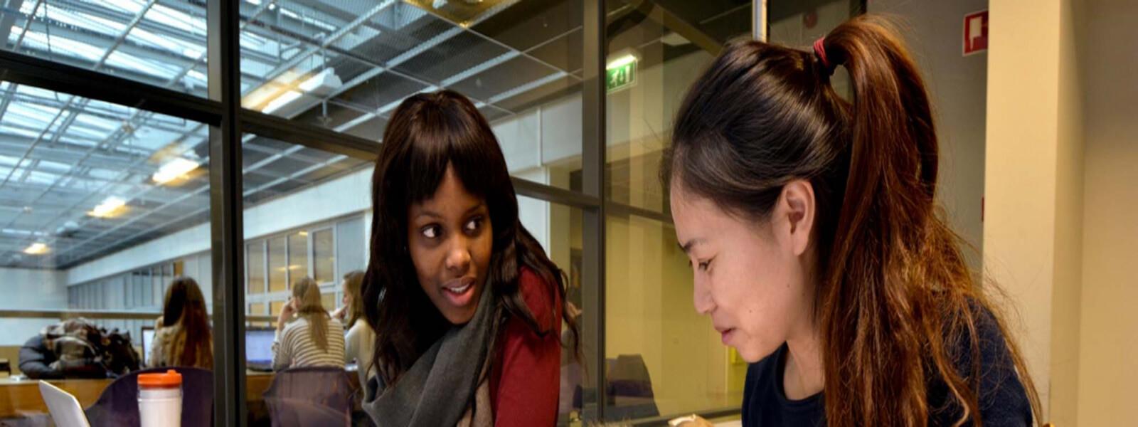 bachelor-international business-studyinholland-universitiesofappliedsciences-stenden-holland-emmen- leeuwarden