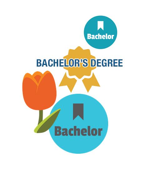 bachelors degree studyinholland