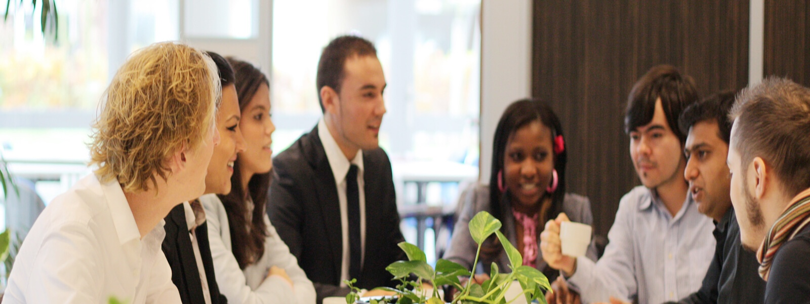 MBA master in Clean Technology Management- studyinholland-universitiesofappliedsciences-wittenborg-apeldoorn-holland